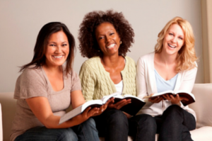 vet book group slider