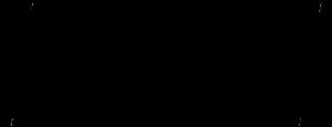 spoken futures logo